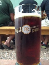 Dark Beer in Summer