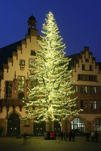 Tallest Christmas Tree in Germany in 2008